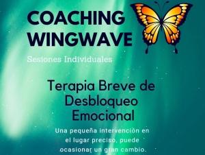 COACHING-WINGWAVE