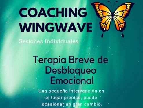 Terapia breve de desbloqueo emocional a través de la KINESIOLOGÍA, la PNL( programación euro lingüística) y EDRM (desensibilización emocional a través del movimiento ocular rápido).